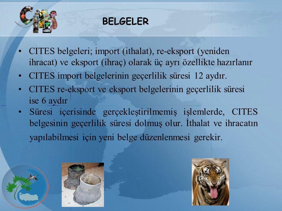 CITES belgeleri; import (ithalat), re-eksport (yeniden ihracat) ve eksport (ihraç) olarak üç ayrı özellikte hazırlanır CITES import belgelerinin geçer