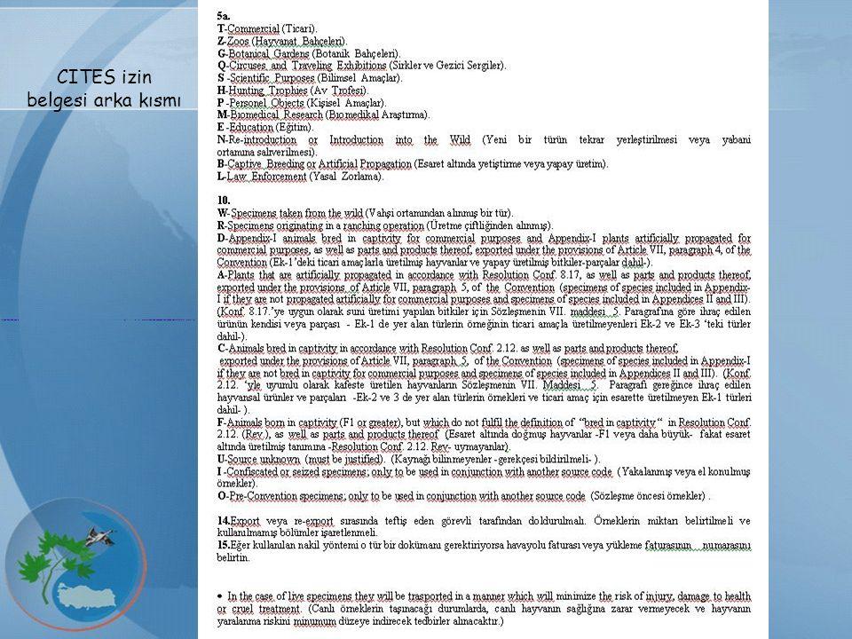 CITES izin belgesi arka kısmı