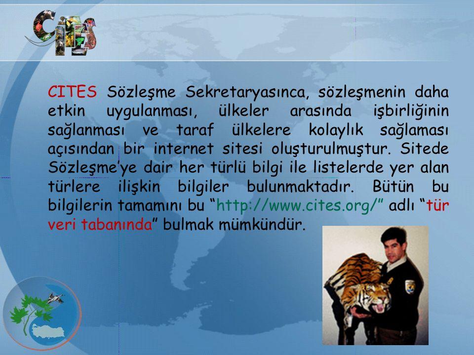 CITES Sözleşme Sekretaryasınca, sözleşmenin daha etkin uygulanması, ülkeler arasında işbirliğinin sağlanması ve taraf ülkelere kolaylık sağlaması açıs
