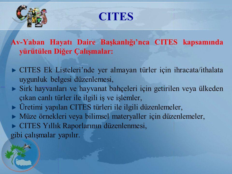 CITES Av-Yaban Hayatı Daire Başkanlığı'nca CITES kapsamında yürütülen Diğer Çalışmalar: CITES Ek Listeleri'nde yer almayan türler için ihracata/ithala
