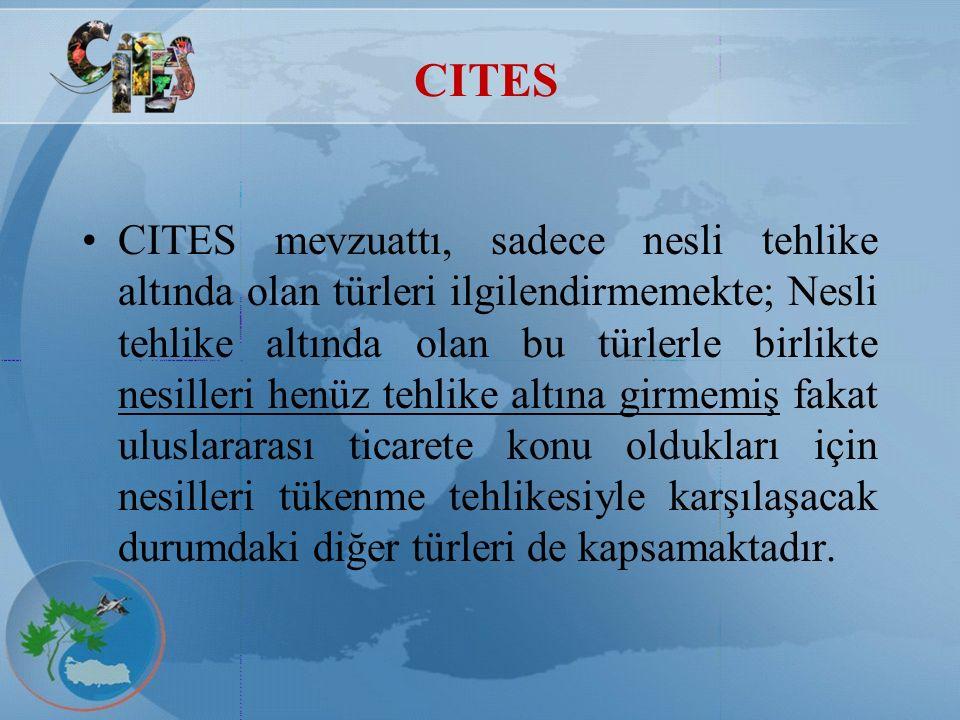 CITES CITES Hükümlerinden Muafiyet halleri: Transit geçişler ve aktarma durumları, Sözleşme öncesi elde edilmiş örnekler, Kişisel ve ev eşyası sayılan bazı örnekler, Suni yolla üretilmiş hayvan ve bitkiler, Bilim adamları ve bilimsel enstitülerin koleksiyonlarındaki örnekleri birbirleri arasında değiştirilmeleri durumları, Gezici sergilerde tutulan ve suni olarak üretilmiş veya sözleşmeden önce ele geçirilmiş örnekler, Sözleşme hükümlerinden muaftır.
