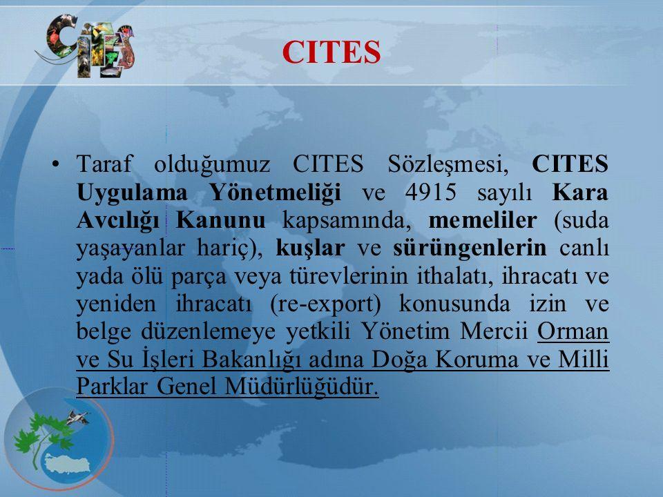 CITES Taraf olduğumuz CITES Sözleşmesi, CITES Uygulama Yönetmeliği ve 4915 sayılı Kara Avcılığı Kanunu kapsamında, memeliler (suda yaşayanlar hariç),