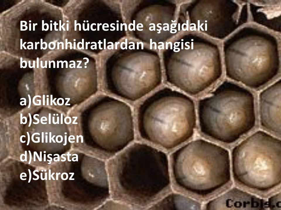 Bir bitki hücresinde aşağıdaki karbonhidratlardan hangisi bulunmaz? a)Glikoz b)Selüloz c)Glikojen d)Nişasta e)Sükroz