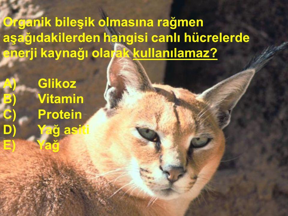 Organik bileşik olmasına rağmen aşağıdakilerden hangisi canlı hücrelerde enerji kaynağı olarak kullanılamaz? A) Glikoz B) Vitamin C) Protein D) Yağ as