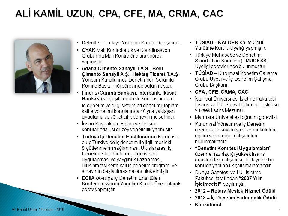 Ali Kamil Uzun / Haziran 2016 Deloitte – Türkiye Yönetim Kurulu Danışmanı. OYAK Mali Kontrolörlük ve Koordinasyon Grubunda Mali Kontrolör olarak görev