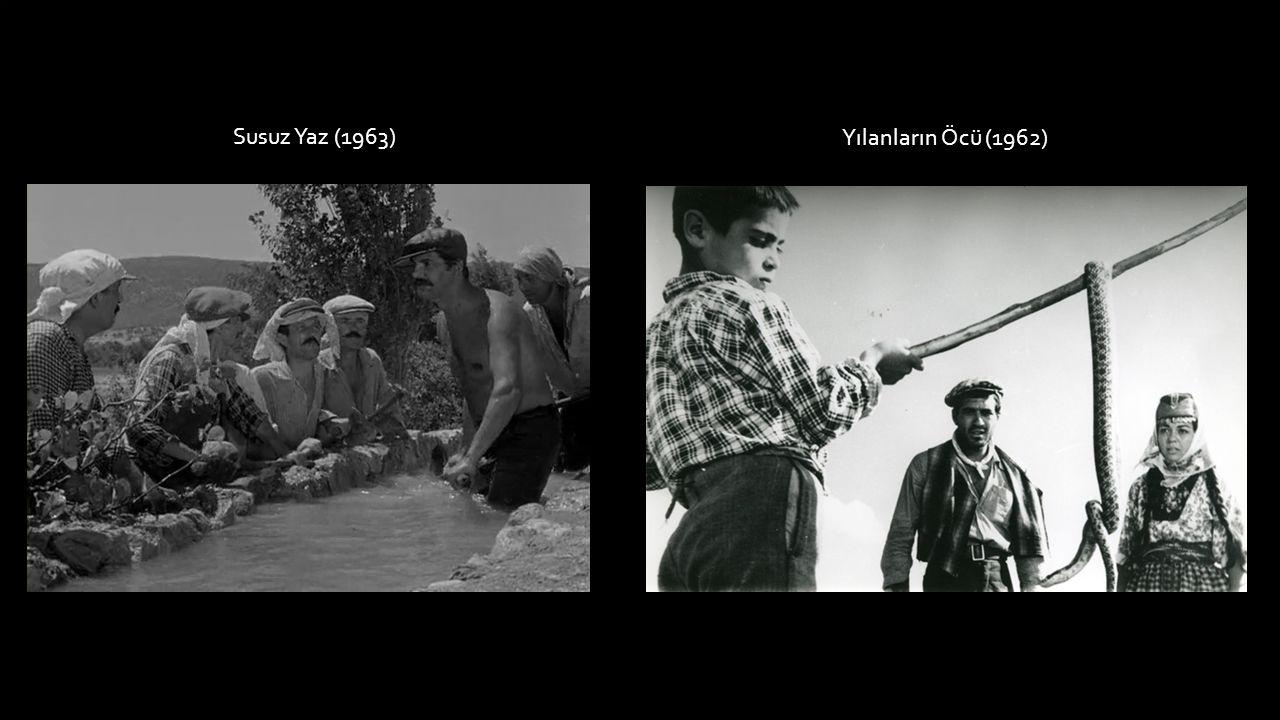 Susuz Yaz (1963) Yılanların Öcü (1962)