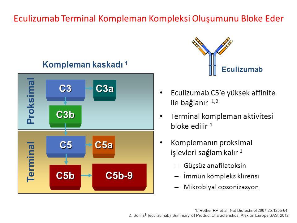 Eculizumab C5'e yüksek affinite ile bağlanır 1,2 Terminal kompleman aktivitesi bloke edilir 1 Komplemanın proksimal işlevleri sağlam kalır 1 – Güçsüz anafilatoksin – İmmün kompleks klirensi – Mikrobiyal opsonizasyon Eculizumab Terminal Kompleman Kompleksi Oluşumunu Bloke EderC3 C3a C3b C5 Proksimal Terminal 1.