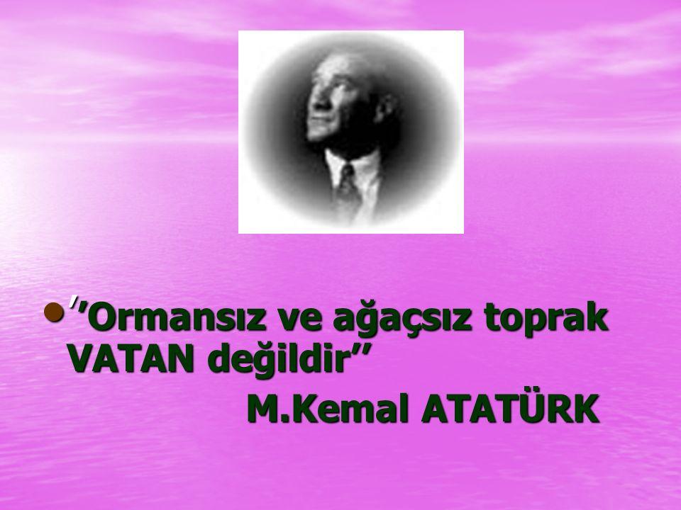 ATATÜRK ve ÇEVRE Atatürk çevreye büyük önem vermiştir. Atatürk Orman Çiftliği'ni kurarak bu konuda topluma örnek olmuştur.