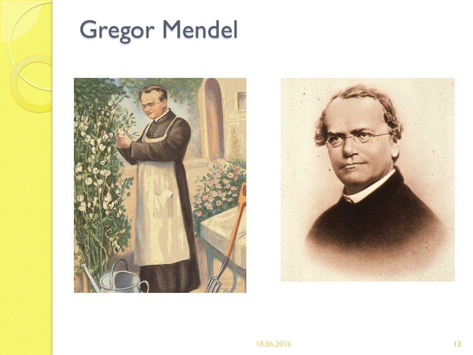 13 Gregor Mendel 18.06.201613