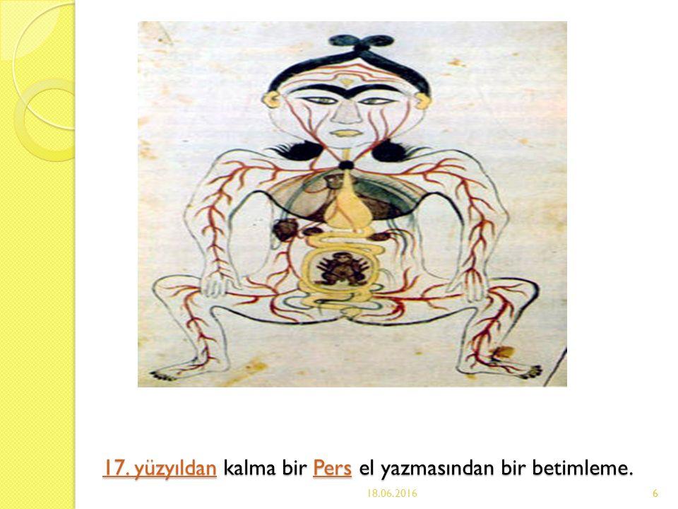 6 17.yüzyıldan17. yüzyıldan kalma bir Pers el yazmasından bir betimleme.