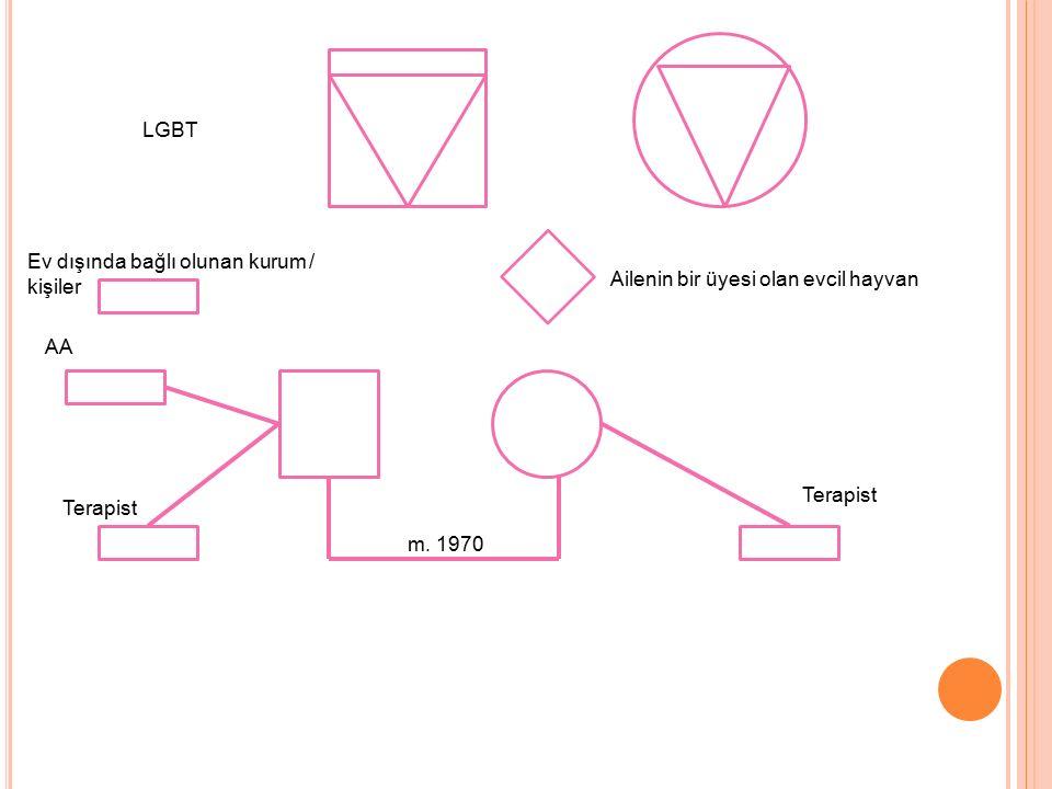 LGBT Ev dışında bağlı olunan kurum / kişiler Ailenin bir üyesi olan evcil hayvan AA Terapist m. 1970