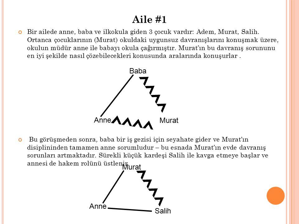 Aile #1 Bir ailede anne, baba ve ilkokula giden 3 çocuk vardır: Adem, Murat, Salih. Ortanca çocuklarının (Murat) okuldaki uygunsuz davranışlarını konu