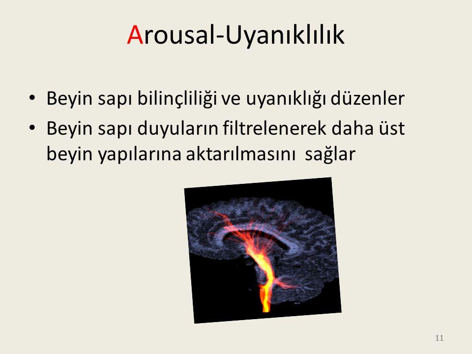 11 Arousal-Uyanıklılık Beyin sapı bilinçliliği ve uyanıklığı düzenler Beyin sapı duyuların filtrelenerek daha üst beyin yapılarına aktarılmasını sağlar 11