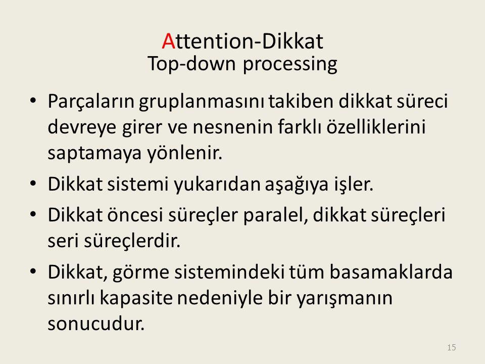 15 Attention-Dikkat Top-down processing Parçaların gruplanmasını takiben dikkat süreci devreye girer ve nesnenin farklı özelliklerini saptamaya yönlenir.