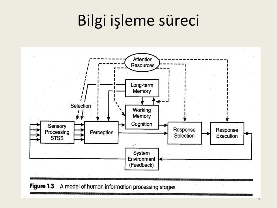 4 4 Bilgi işleme süreci 4