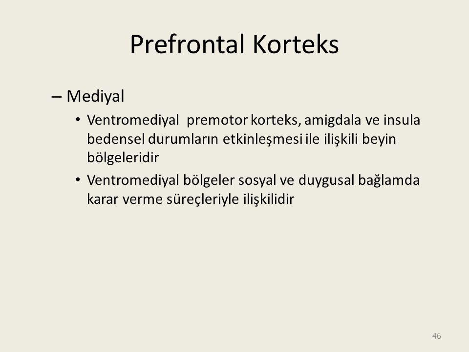 Prefrontal Korteks – Mediyal Ventromediyal premotor korteks, amigdala ve insula bedensel durumların etkinleşmesi ile ilişkili beyin bölgeleridir Ventromediyal bölgeler sosyal ve duygusal bağlamda karar verme süreçleriyle ilişkilidir 46