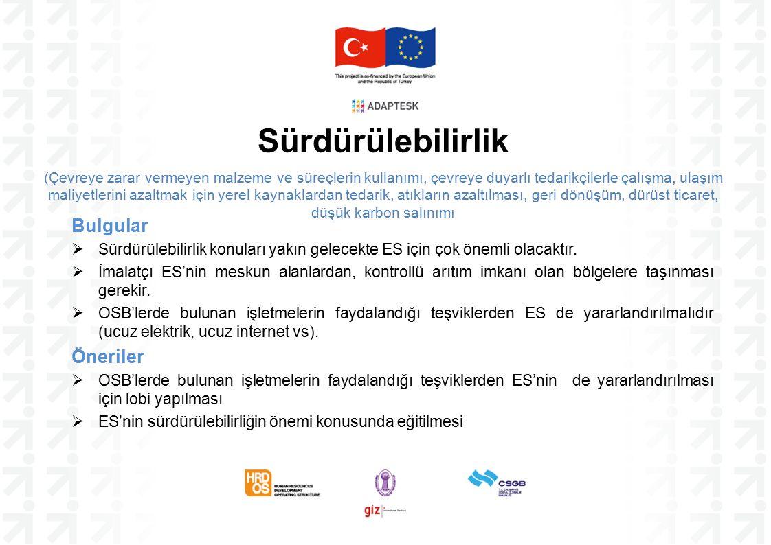 Bulgular  Sürdürülebilirlik konuları yakın gelecekte ES için çok önemli olacaktır.