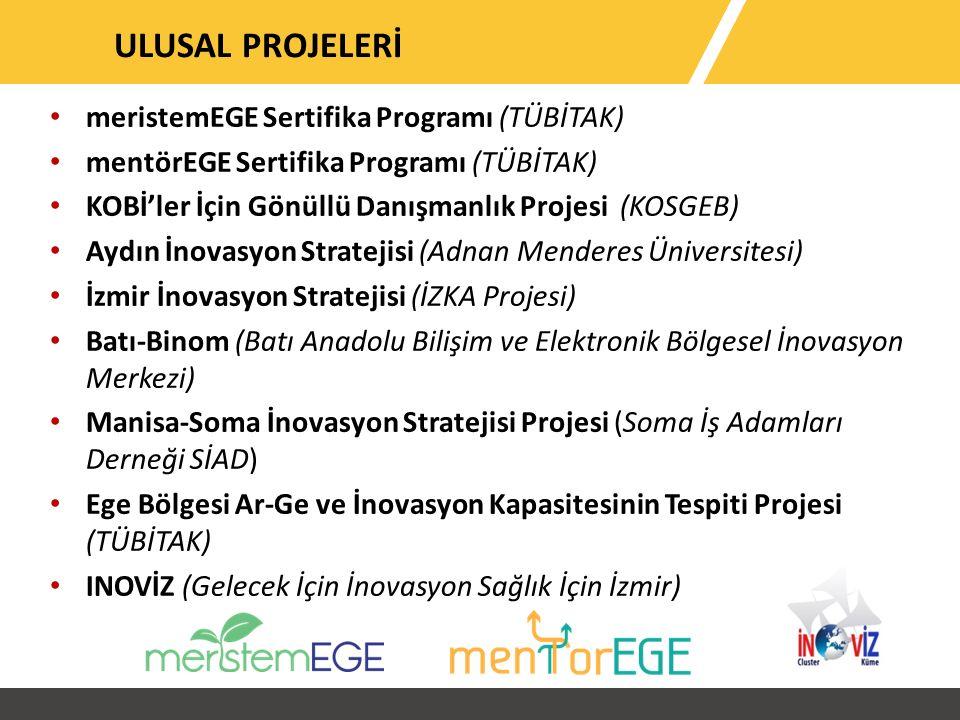meristemEGE Sertifika Programı (TÜBİTAK) mentörEGE Sertifika Programı (TÜBİTAK) KOBİ'ler İçin Gönüllü Danışmanlık Projesi (KOSGEB) Aydın İnovasyon Stratejisi (Adnan Menderes Üniversitesi) İzmir İnovasyon Stratejisi (İZKA Projesi) Batı-Binom (Batı Anadolu Bilişim ve Elektronik Bölgesel İnovasyon Merkezi) Manisa-Soma İnovasyon Stratejisi Projesi (Soma İş Adamları Derneği SİAD) Ege Bölgesi Ar-Ge ve İnovasyon Kapasitesinin Tespiti Projesi (TÜBİTAK) INOVİZ (Gelecek İçin İnovasyon Sağlık İçin İzmir) ULUSAL PROJELERİ