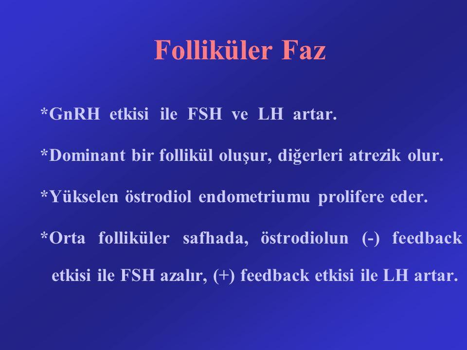 Folliküler Faz *GnRH etkisi ile FSH ve LH artar. *Dominant bir follikül oluşur, diğerleri atrezik olur. *Yükselen östrodiol endometriumu prolifere ede