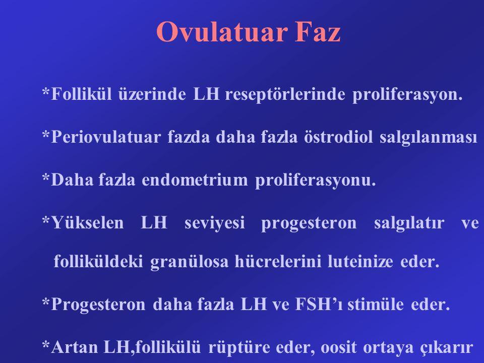 Ovulatuar Faz *Follikül üzerinde LH reseptörlerinde proliferasyon. *Periovulatuar fazda daha fazla östrodiol salgılanması *Daha fazla endometrium prol