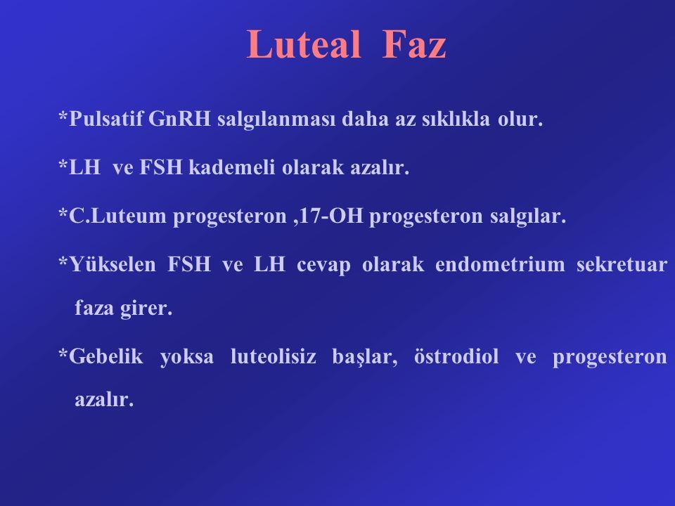 Luteal Faz *Pulsatif GnRH salgılanması daha az sıklıkla olur. *LH ve FSH kademeli olarak azalır. *C.Luteum progesteron,17-OH progesteron salgılar. *Yü