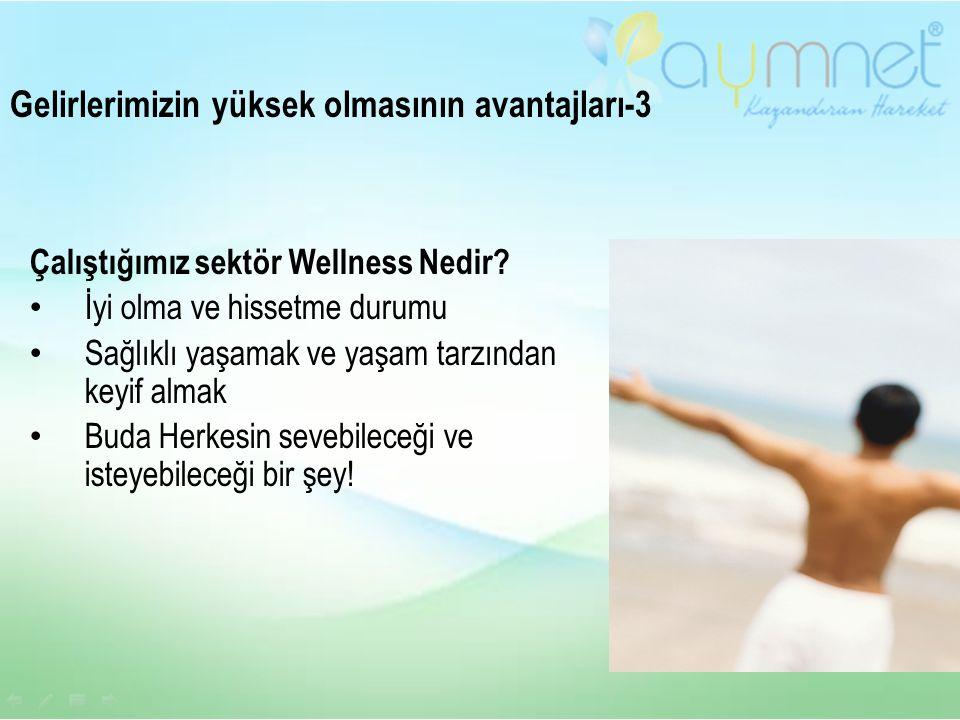 Çalıştığımız sektör Wellness Nedir.