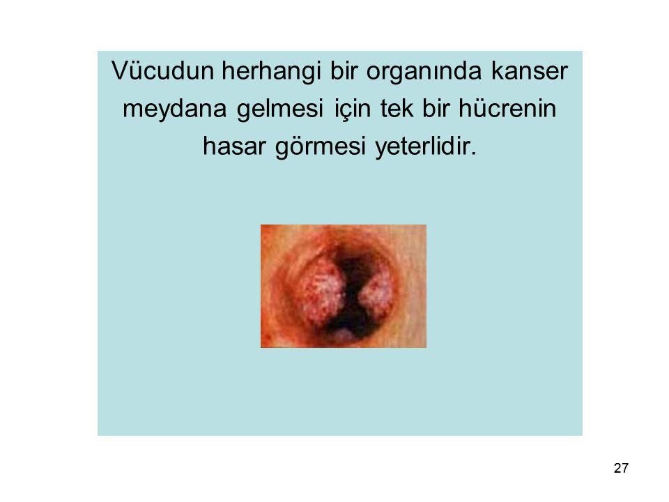 27 Vücudun herhangi bir organında kanser meydana gelmesi için tek bir hücrenin hasar görmesi yeterlidir.