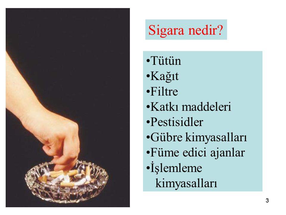 33 Sigara nedir.