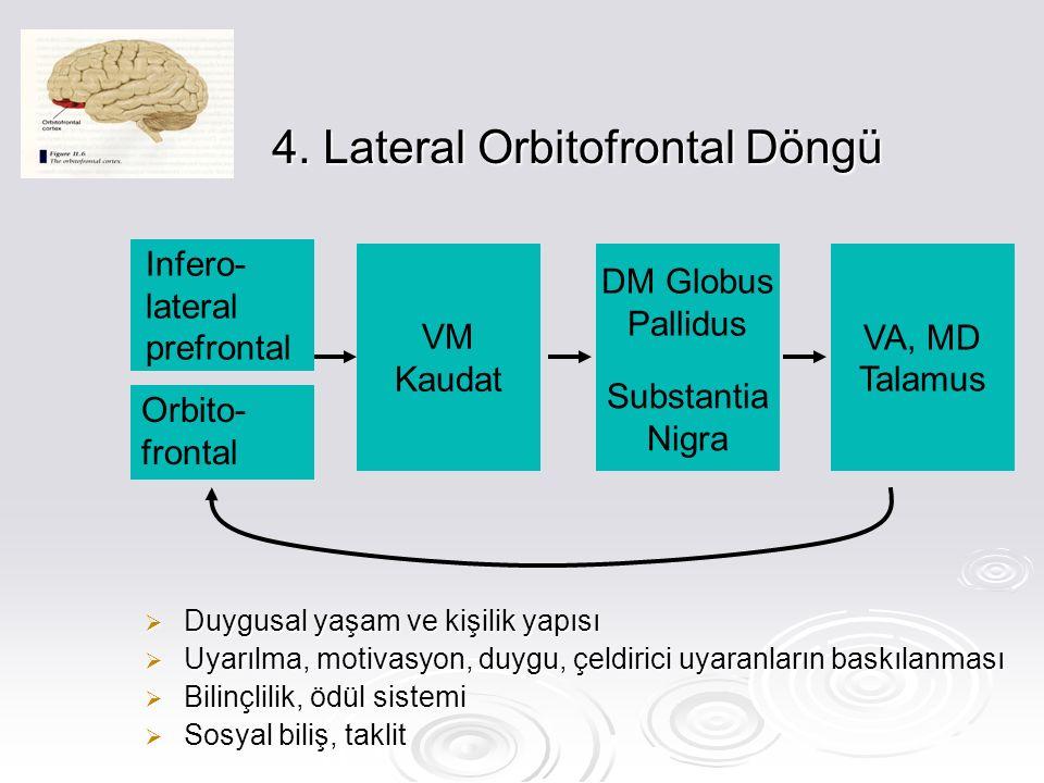 4. Lateral Orbitofrontal Döngü  Duygusal yaşam ve kişilik yapısı  Uyarılma, motivasyon, duygu, çeldirici uyaranların baskılanması  Bilinçlilik, ödü