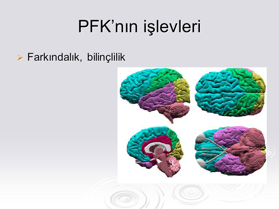 PFK'nın işlevleri  Farkındalık, bilinçlilik