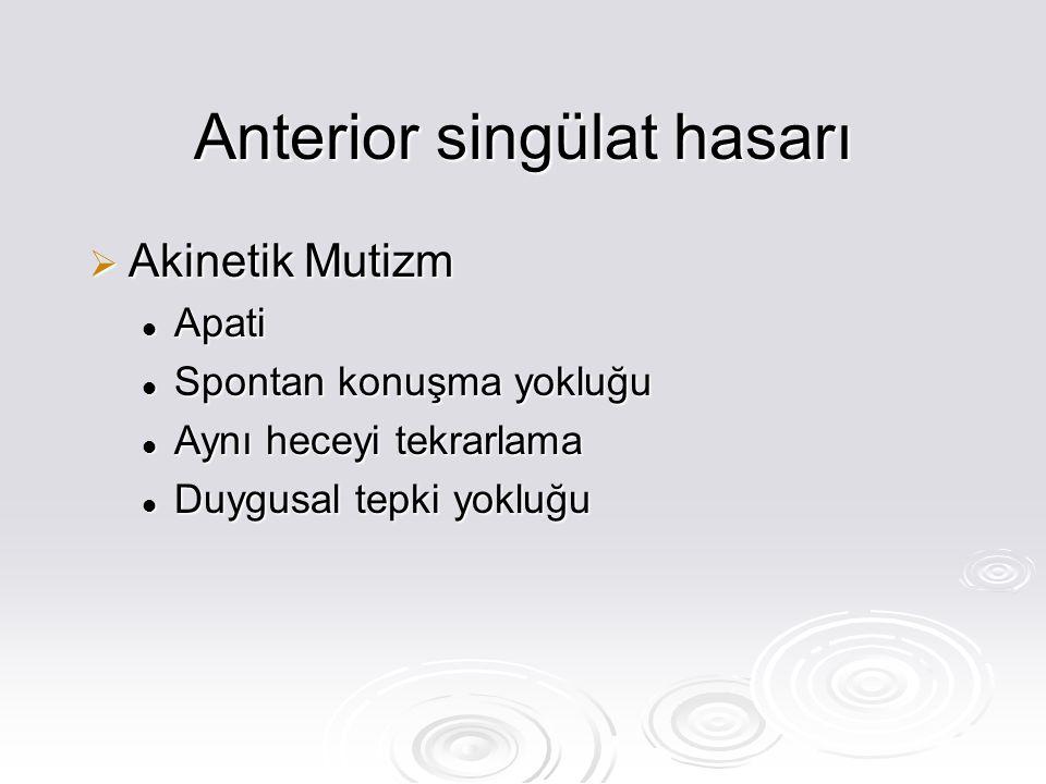 Anterior singülat hasarı  Akinetik Mutizm Apati Apati Spontan konuşma yokluğu Spontan konuşma yokluğu Aynı heceyi tekrarlama Aynı heceyi tekrarlama Duygusal tepki yokluğu Duygusal tepki yokluğu