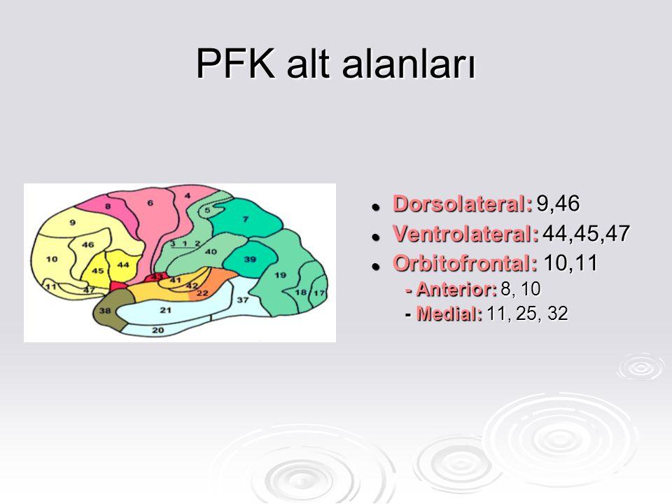 Dorsal prefrontal korteks Dorsal prefrontal korteks İşlem belleği ve motor planlama ile ilişkilidir.