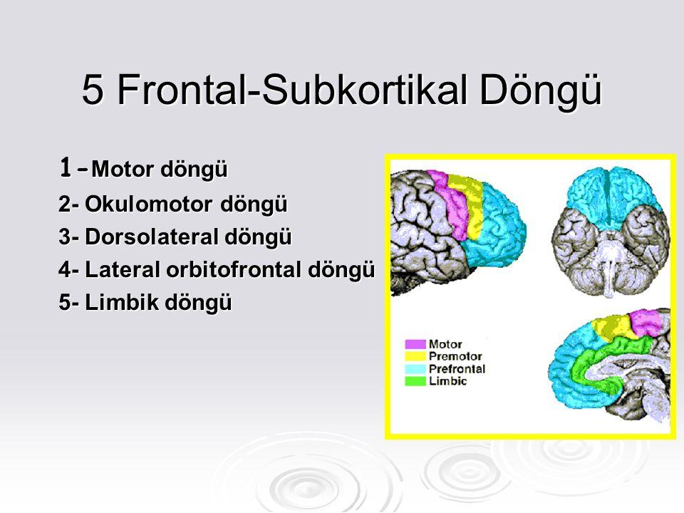 5 Frontal-Subkortikal Döngü 1- Motor döngü 2- Okulomotor döngü 3- Dorsolateral döngü 4- Lateral orbitofrontal döngü 5- Limbik döngü