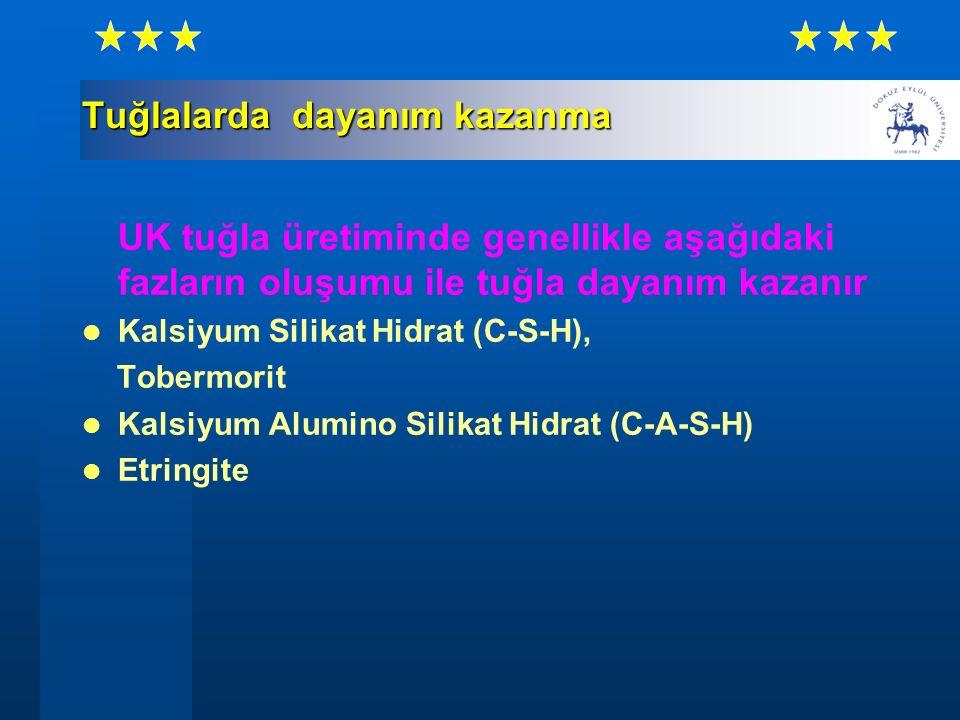 Tuğlalarda dayanım kazanma UK tuğla üretiminde genellikle aşağıdaki fazların oluşumu ile tuğla dayanım kazanır Kalsiyum Silikat Hidrat (C-S-H), Toberm