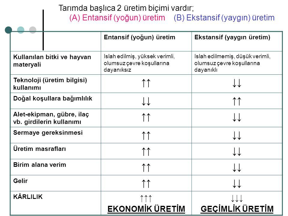 Tarımda başlıca 2 üretim biçimi vardır; (A) Entansif (yoğun) üretim (B) Ekstansif (yaygın) üretim Entansif (yoğun) üretimEkstansif (yaygın üretim) Kul