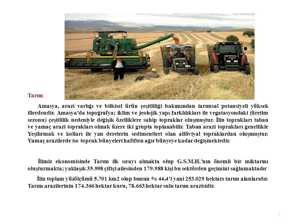 7 Tarım Amasya, arazi varlığı ve bitkisel ürün çeşitliliği bakımından tarımsal potansiyeli yüksek illerdendir. Amasya'da topoğrafya; iklim ve jeolojik