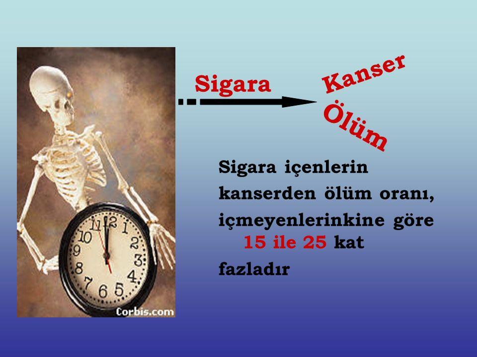 Sigara içenlerin kanserden ölüm oranı, içmeyenlerinkine göre 15 ile 25 kat fazladır Kanser Ölüm Sigara