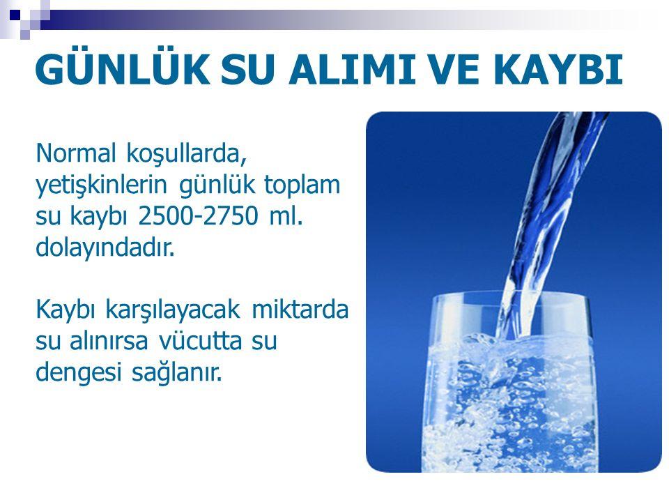 GÜNLÜK SU ALIMI VE KAYBI Normal koşullarda, yetişkinlerin günlük toplam su kaybı 2500-2750 ml. dolayındadır. Kaybı karşılayacak miktarda su alınırsa v