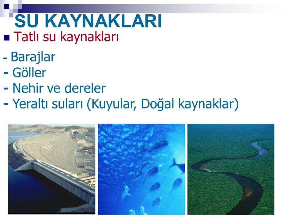 SU KAYNAKLARI Tatlı su kaynakları - Barajlar - Göller - Nehir ve dereler - Yeraltı suları (Kuyular, Doğal kaynaklar)