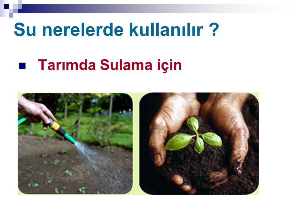 Su nerelerde kullanılır ? Tarımda Sulama için
