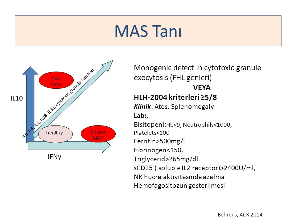 MAS Tanı IL10 IFNγ IL6, IL4, IL1, IL18, IL33, cytotoxic granule function Severe MAS Monogenic defect in cytotoxic granule exocytosis (FHL genleri) VEY