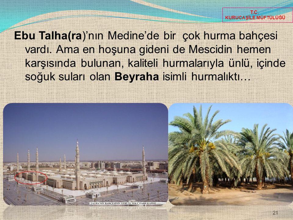 21 T.C. KURUCAŞİLE MÜFTÜLÜĞÜ Ebu Talha(ra)'nın Medine'de bir çok hurma bahçesi vardı. Ama en hoşuna gideni de Mescidin hemen karşısında bulunan, kalit