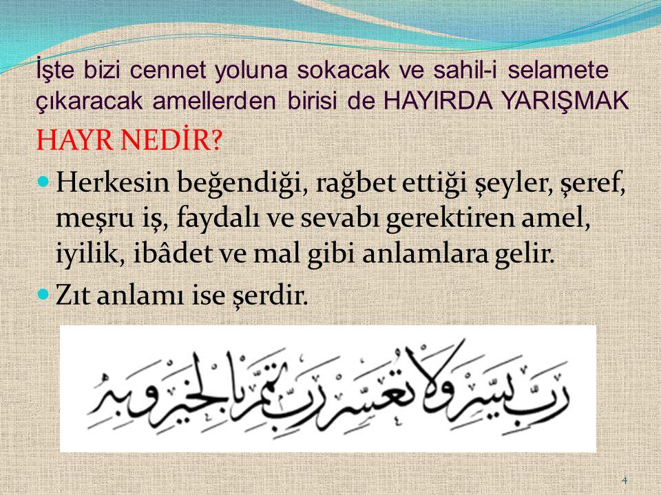 Hz.Peygamber (s.a.s), Müslümanların savaşa hazırlanması için onları gayretlendiriyor, durumu müsait olanların orduya yiyecek ve binek yardımında bulunmasını istiyordu.