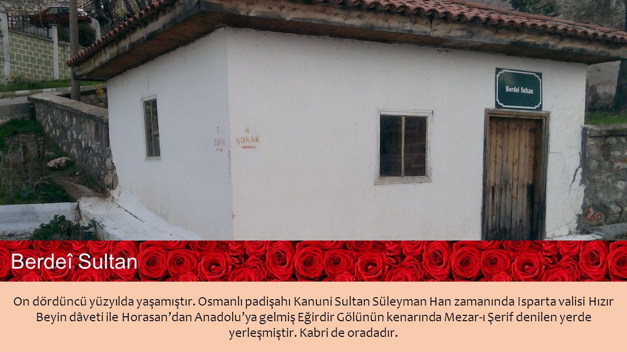 1494 yılında Tosya da doğdu.Tahsilini memleketinde tamamladıktan sonra İstanbul a gitti.