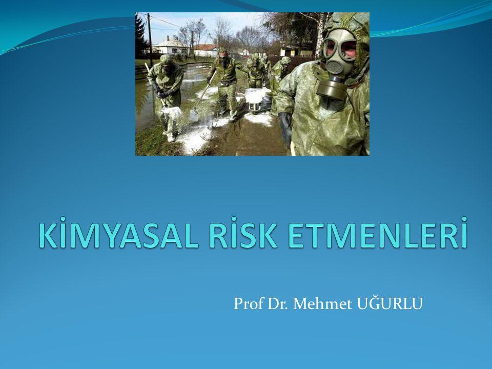 Prof Dr. Mehmet UĞURLU