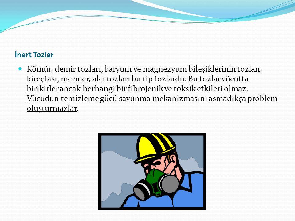 İnert Tozlar Kömür, demir tozları, baryum ve magnezyum bileşiklerinin tozlan, kireçtaşı, mermer, alçı tozları bu tip tozlardır.