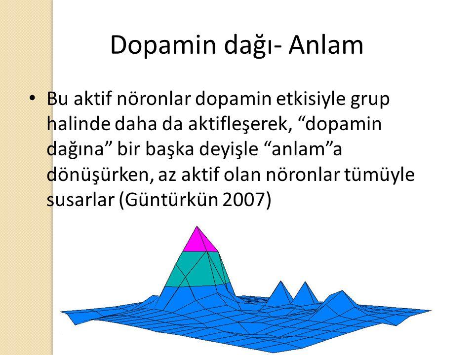 """Dopamin dağı- Anlam Bu aktif nöronlar dopamin etkisiyle grup halinde daha da aktifleşerek, """"dopamin dağına"""" bir başka deyişle """"anlam""""a dönüşürken, az"""