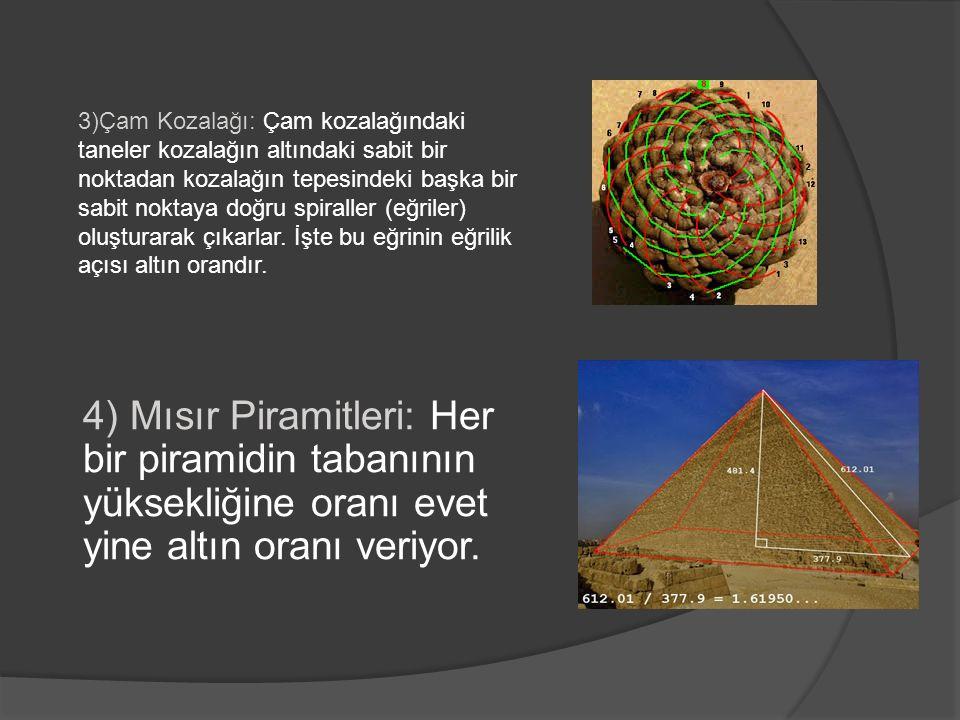 4) Mısır Piramitleri: Her bir piramidin tabanının yüksekliğine oranı evet yine altın oranı veriyor.