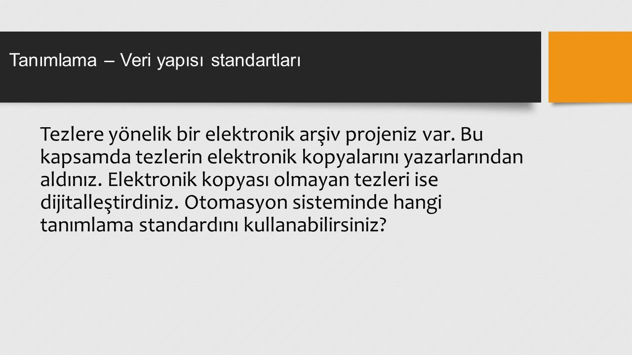Tanımlama – Veri yapısı standartları Tezlere yönelik bir elektronik arşiv projeniz var.