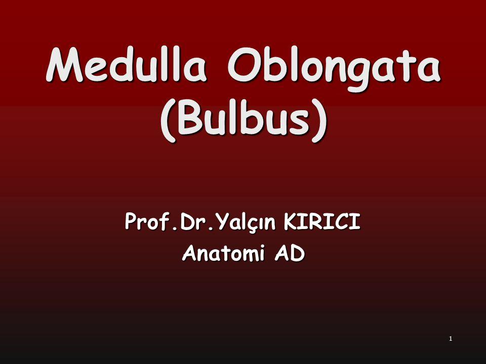 Medulla Oblongata (Bulbus) Prof.Dr.Yalçın KIRICI Anatomi AD 1